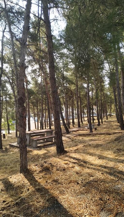 Ασπίδα προστασίας απέναντι στις πυρκαγιές από το δήμο Θέρμης